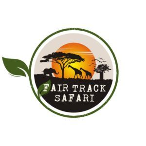 Fair Track Safari